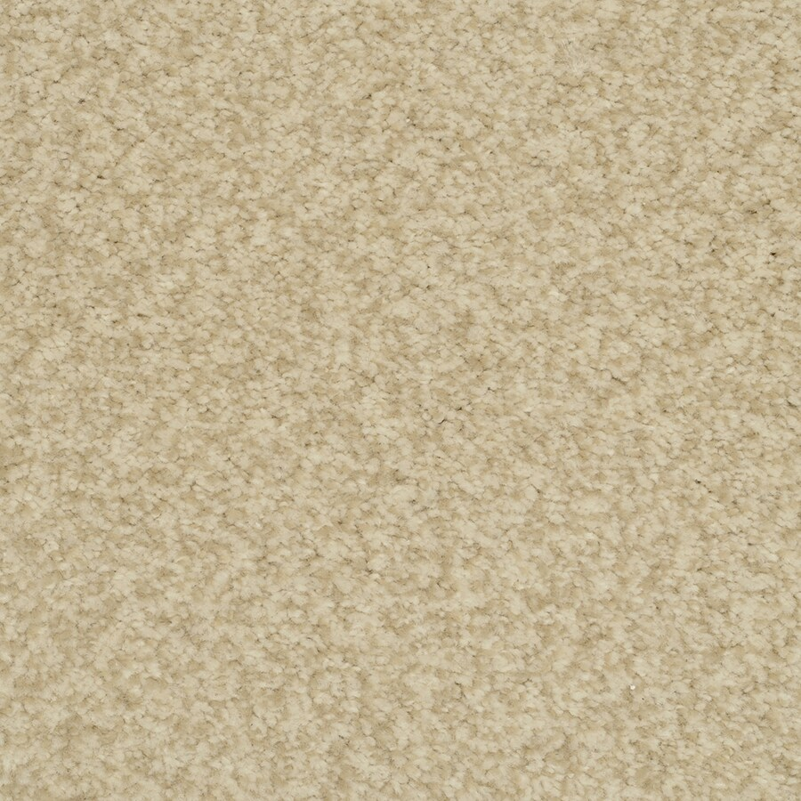 STAINMASTER Active Family Fiesta Magnificent Plush Carpet Sample