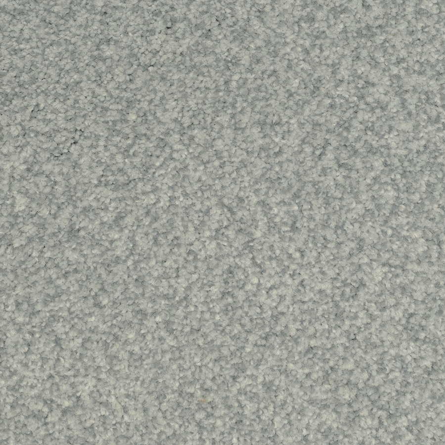 STAINMASTER Active Family Fiesta Bluebud Carpet Sample