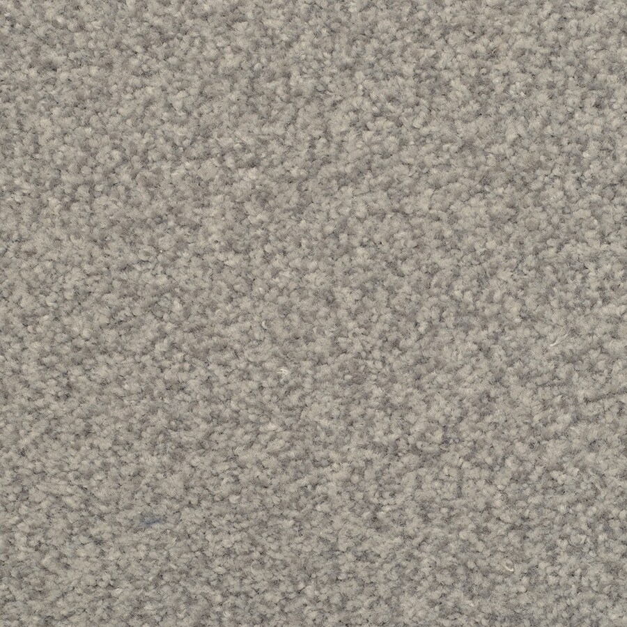 STAINMASTER Active Family Fiesta Windsor Carpet Sample