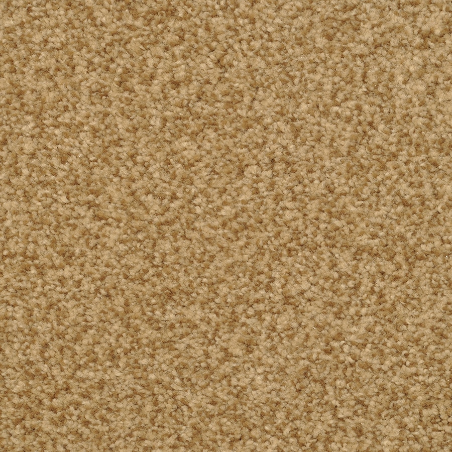 STAINMASTER Fiesta Active Family Dazzle Plush Carpet Sample