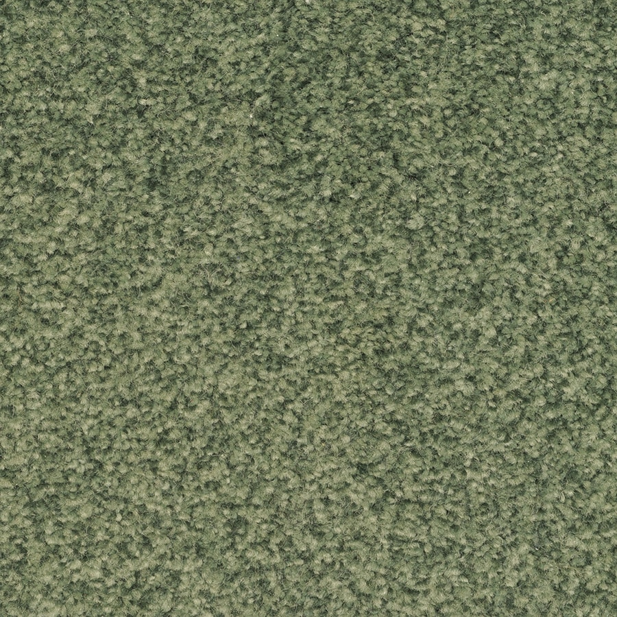 STAINMASTER Active Family Fiesta Electra Carpet Sample