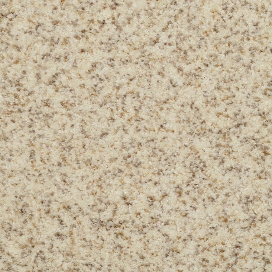 STAINMASTER Active Family Fiesta Just Right Plush Carpet Sample