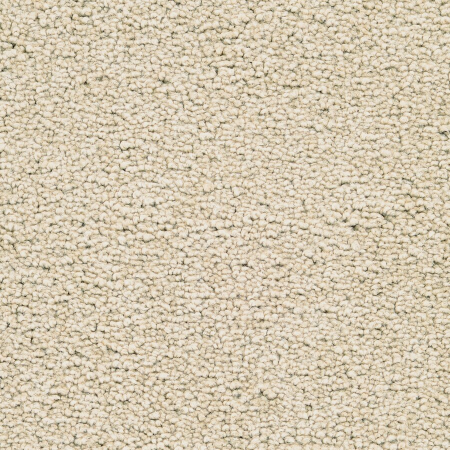 STAINMASTER Active Family Astral Delicate Plush Carpet Sample