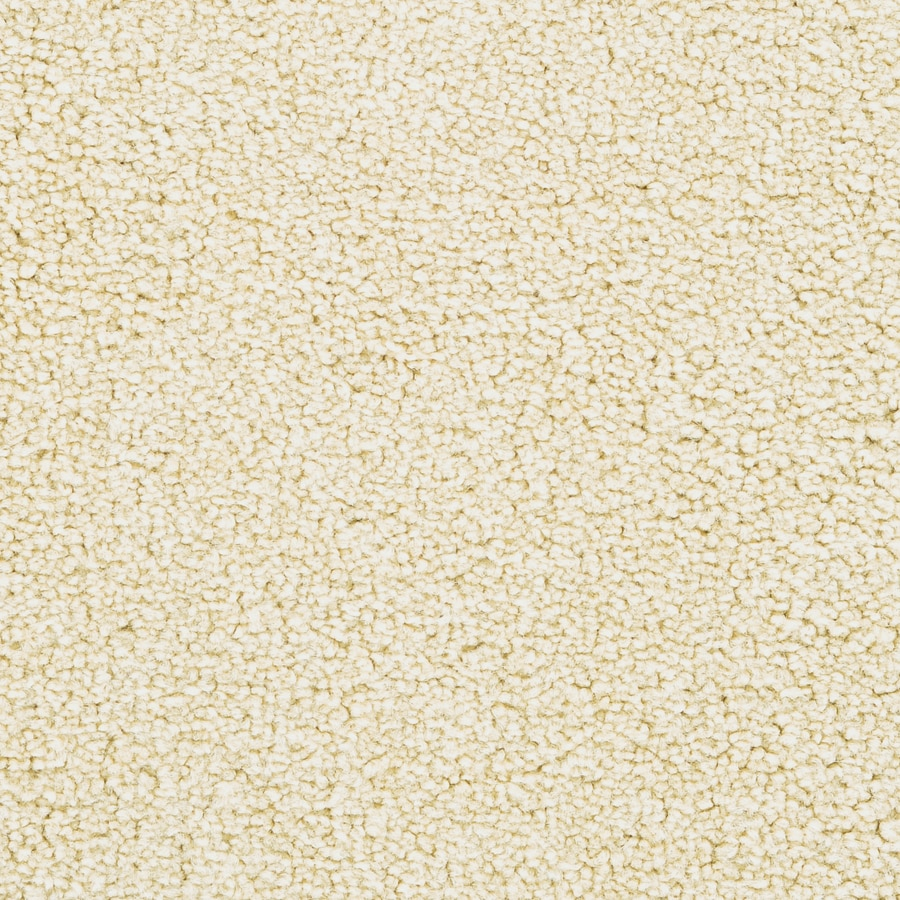 STAINMASTER Active Family Astral Stream Bed Plush Carpet Sample
