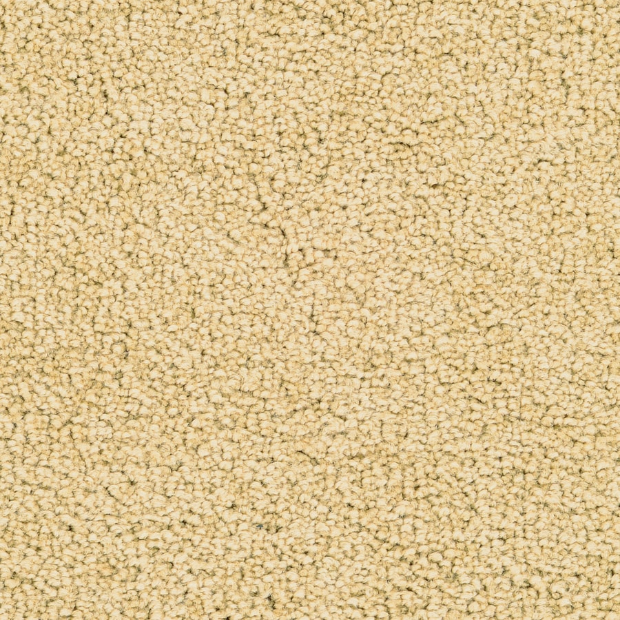 STAINMASTER Active Family Astral Taupe Plush Carpet Sample