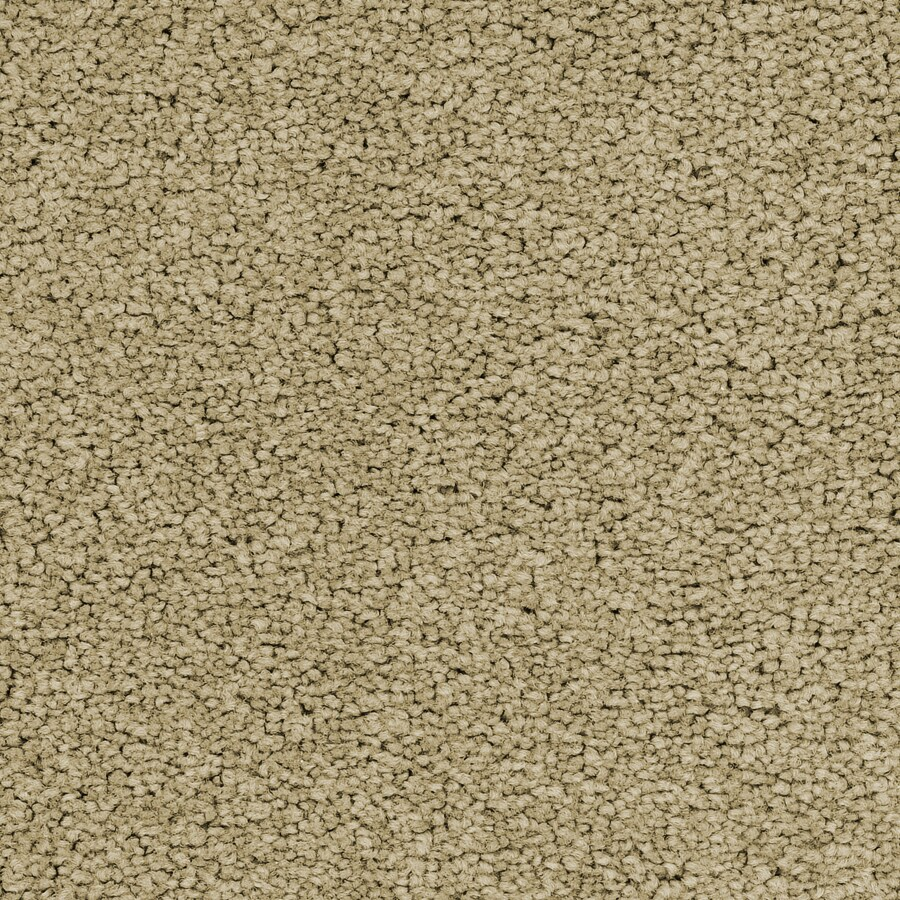 STAINMASTER Active Family Stellar Joyous Carpet Sample
