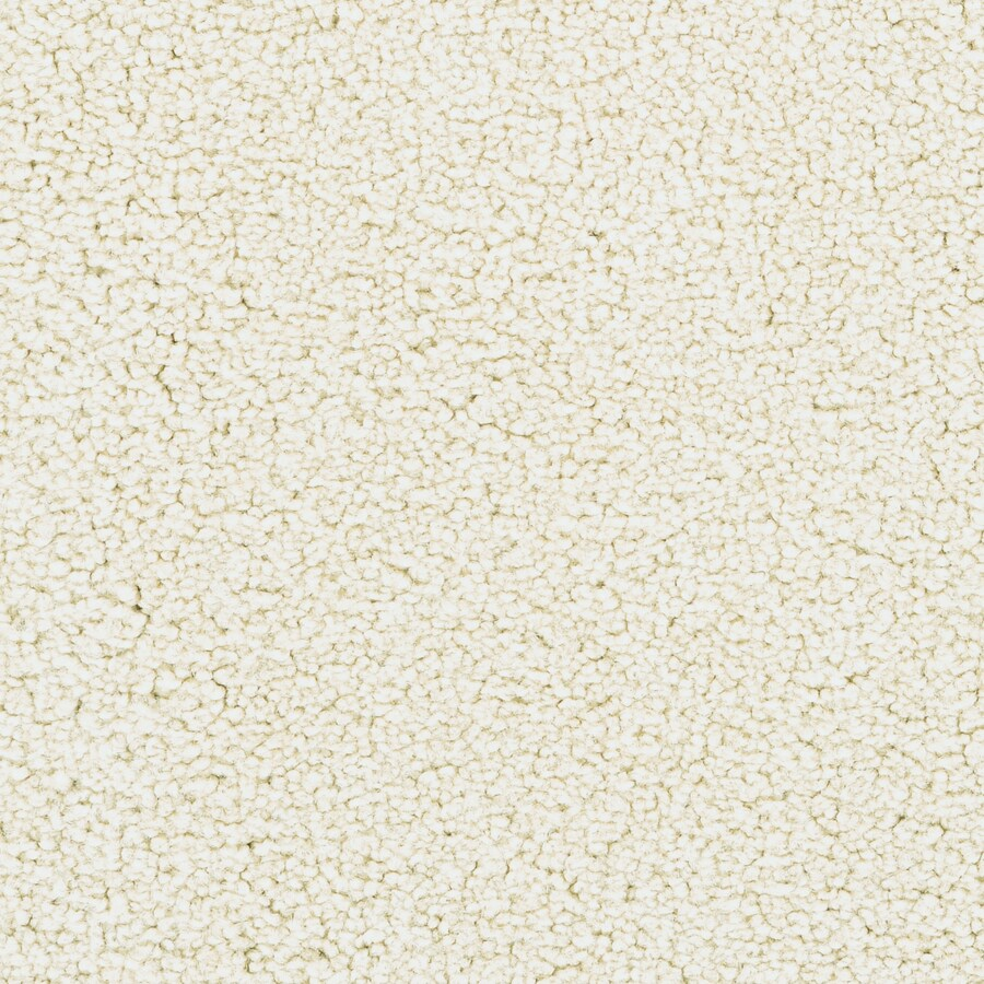 STAINMASTER Active Family Stellar Linen Plush Carpet Sample