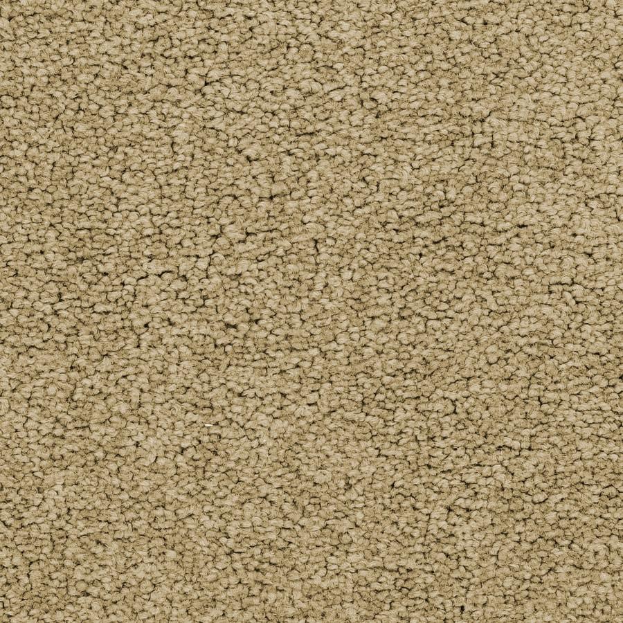 STAINMASTER Active Family Stellar Nova Carpet Sample