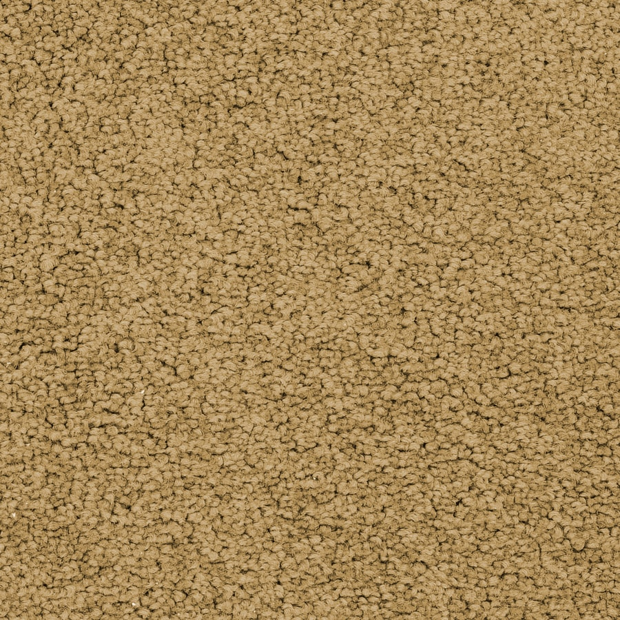 STAINMASTER Stellar Active Family Garden Plus Carpet Sample