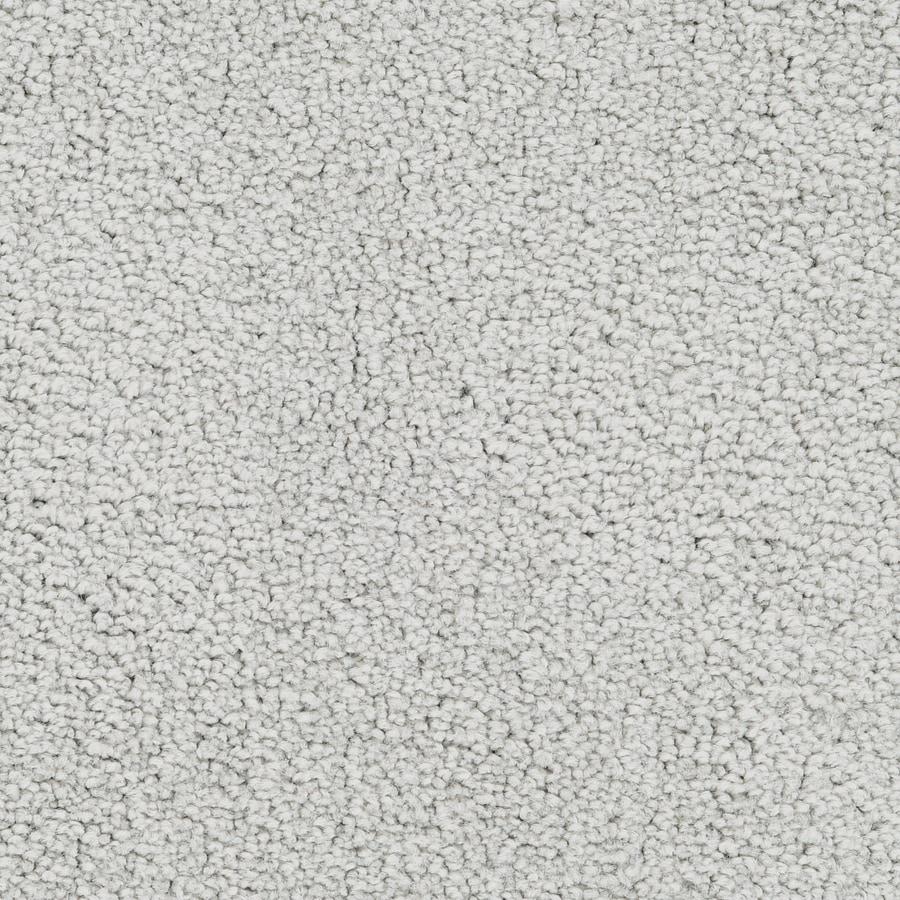 STAINMASTER Active Family Stellar Guardian Plush Carpet Sample