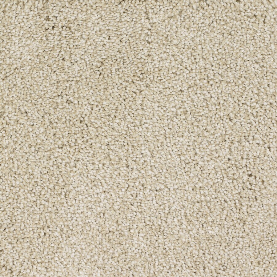 STAINMASTER Briar Patch TruSoft Cream/Beige/Almond Plush Carpet Sample