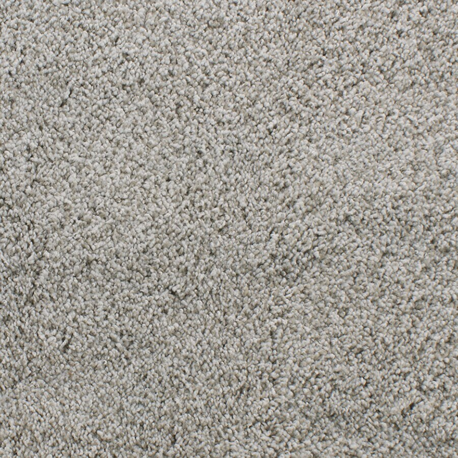 STAINMASTER Briar Patch TruSoft Gray/Silver Plus Carpet Sample
