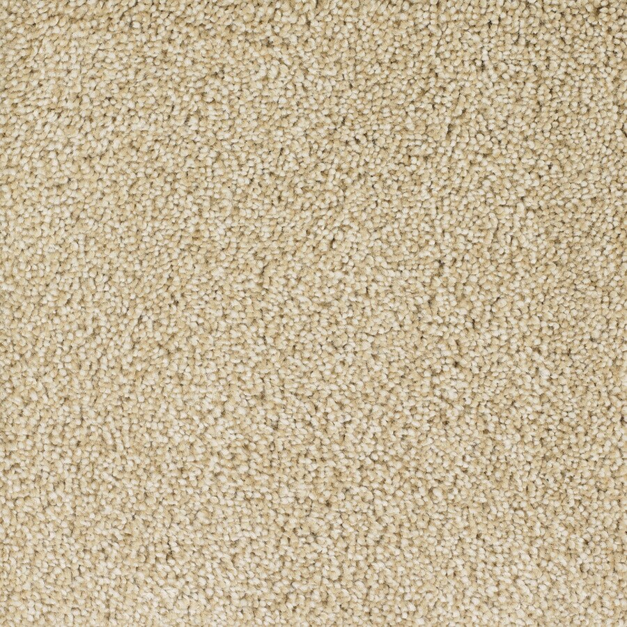 STAINMASTER TruSoft Briar Patch Cream/Beige/Almond Plush Carpet Sample