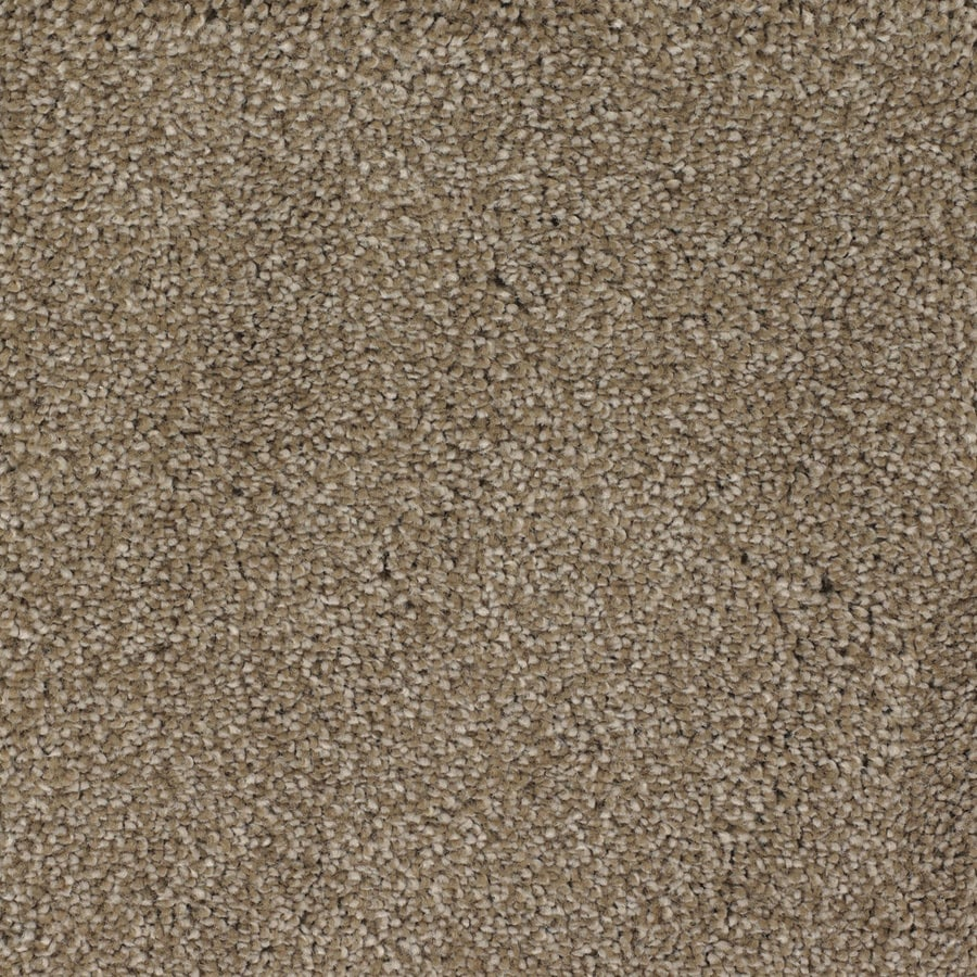 STAINMASTER TruSoft Briar Patch Brown/Tan Carpet Sample