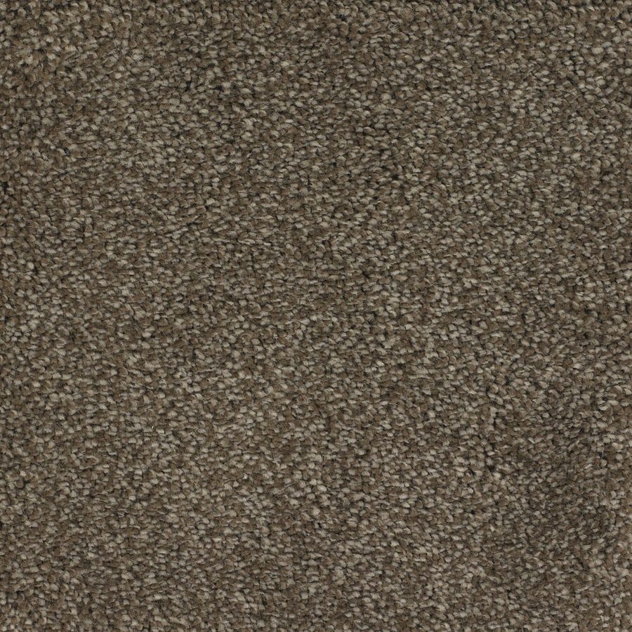 STAINMASTER Briar Patch Trusoft Brown/Tan Plush Carpet Sample