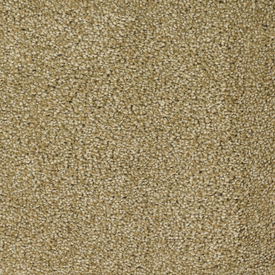 STAINMASTER Briar Patch TruSoft Yellow/Gold Plush Carpet Sample