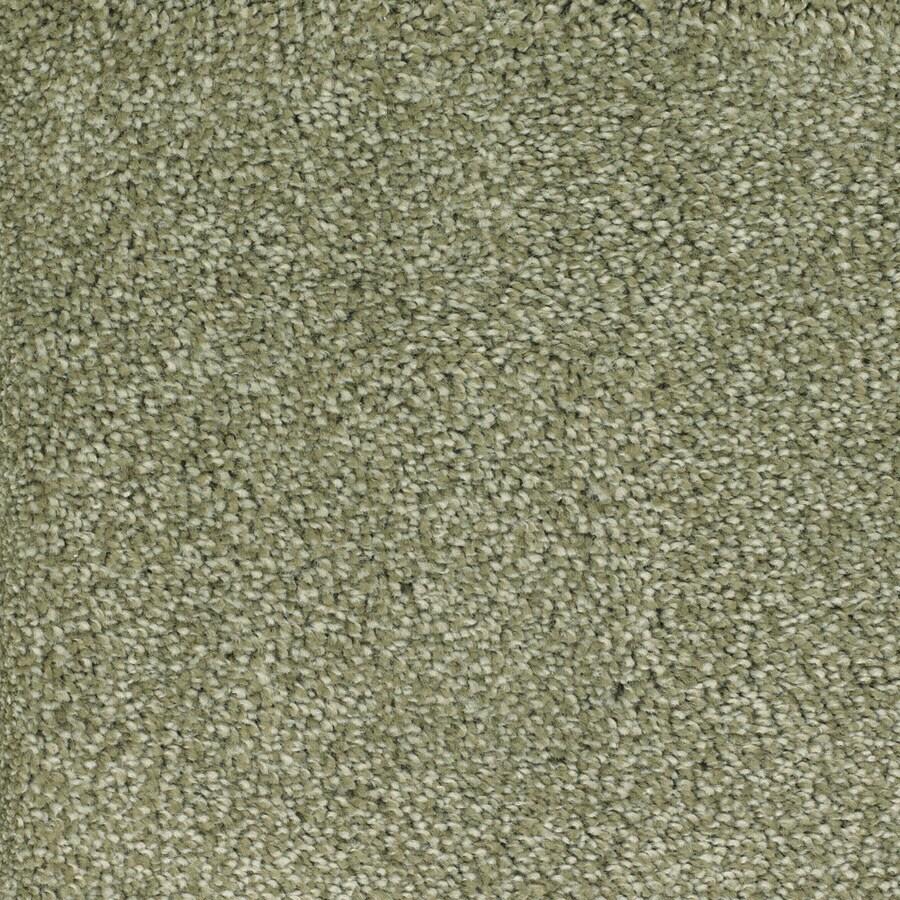 STAINMASTER TruSoft Shafer Valley Green Plush Carpet Sample