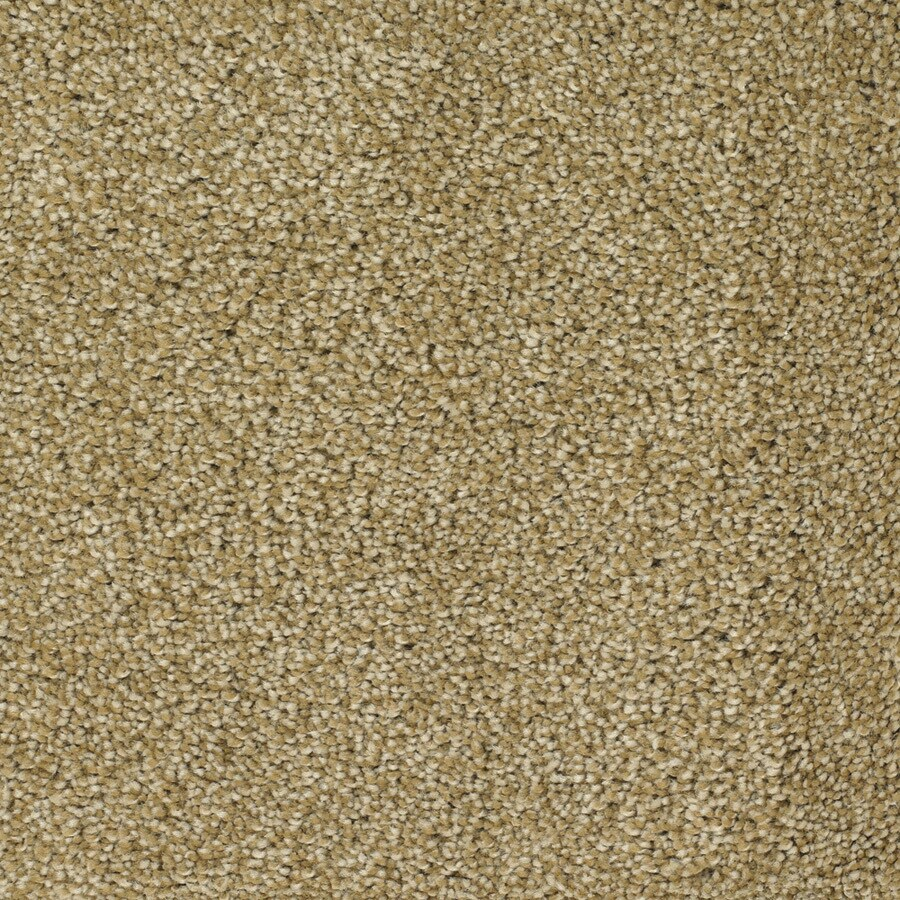 STAINMASTER Shafer Valley Trusoft Yellow/Gold Plus Carpet Sample