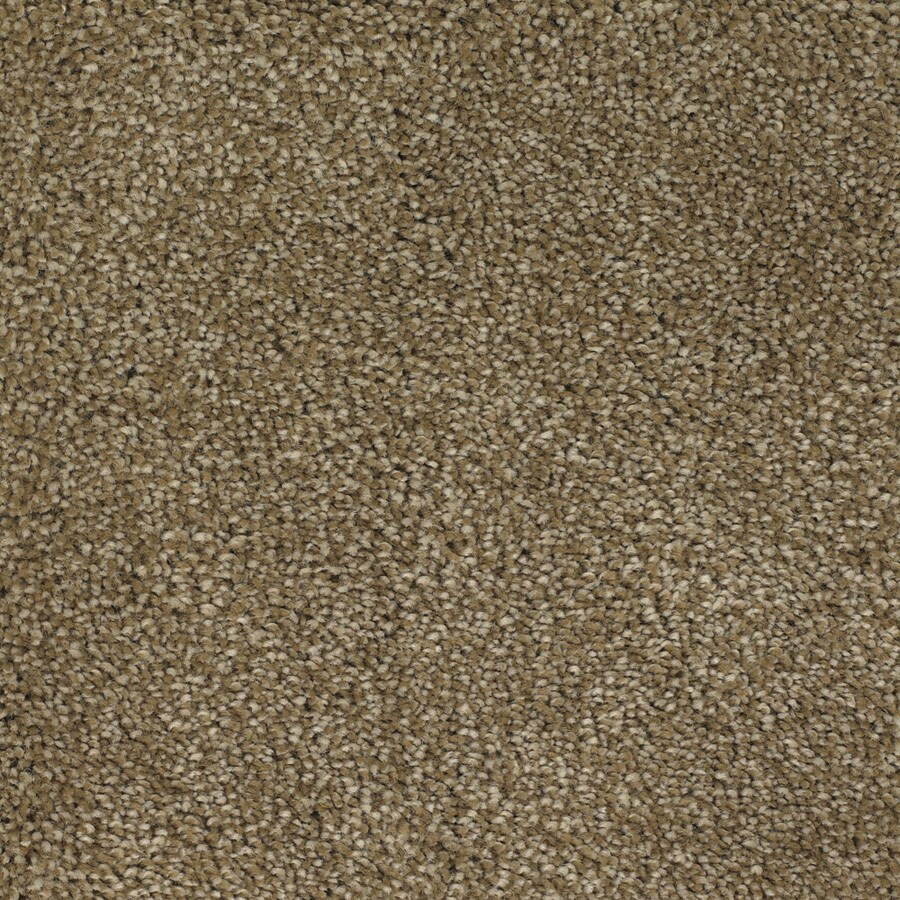 STAINMASTER TruSoft Shafer Valley Brown/Tan Carpet Sample