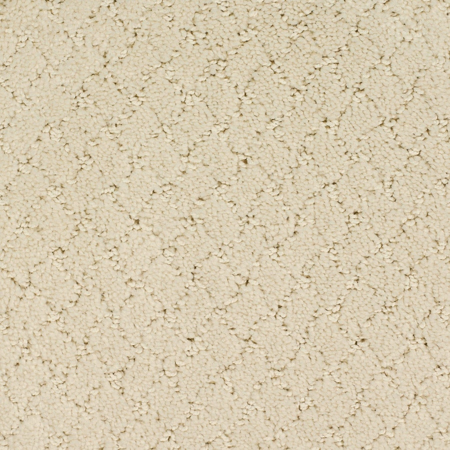 STAINMASTER Galesburg TruSoft Cream/Beige/Almond Cut and Loop Carpet Sample
