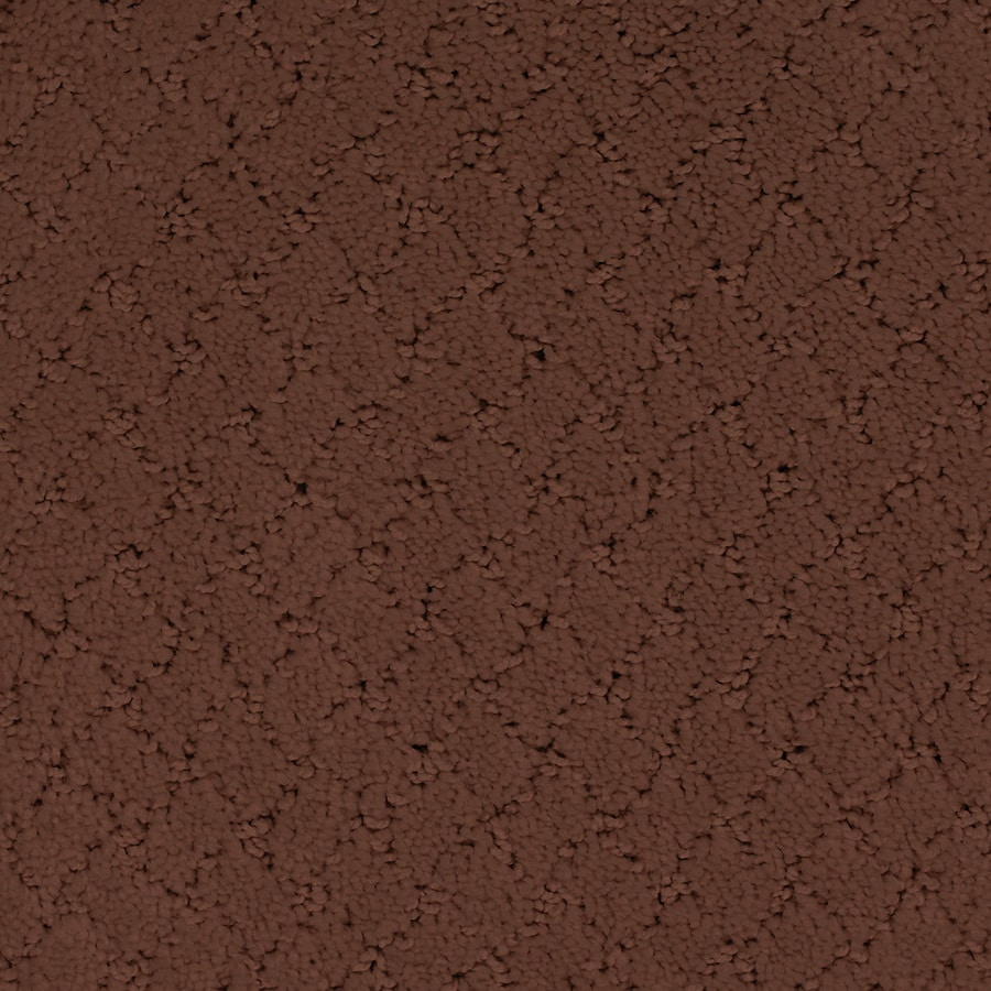 STAINMASTER TruSoft Galesburg Red/Pink Carpet Sample