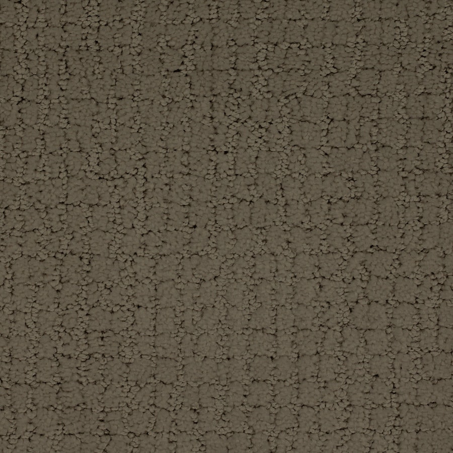 STAINMASTER TruSoft Perpetual Brown/Tan Berber/Loop Carpet Sample