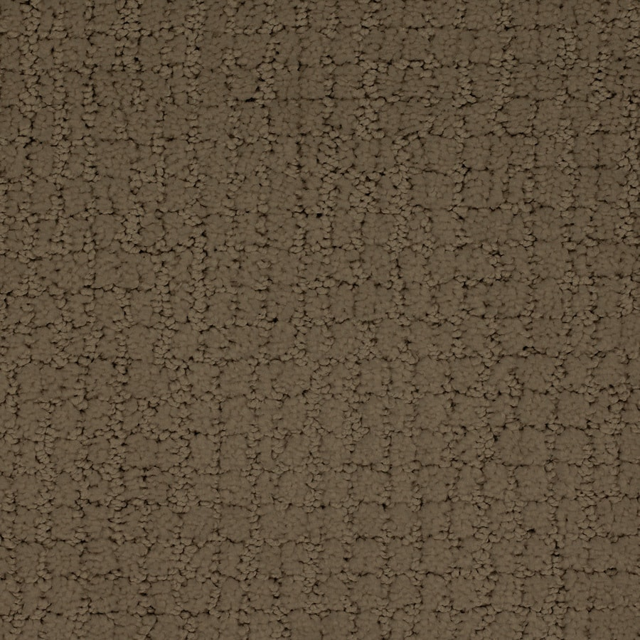 STAINMASTER Perpetual TruSoft Brown/Tan Cut and Loop Carpet Sample
