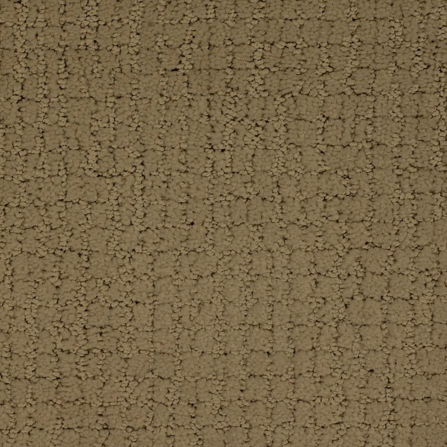 STAINMASTER Perpetual TruSoft Brown/Tan Cut and Loop Carpet Sample