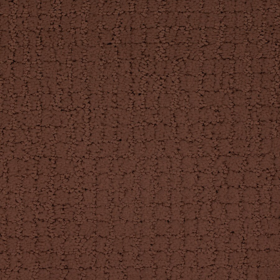 STAINMASTER TruSoft Perpetual Red/Pink Carpet Sample