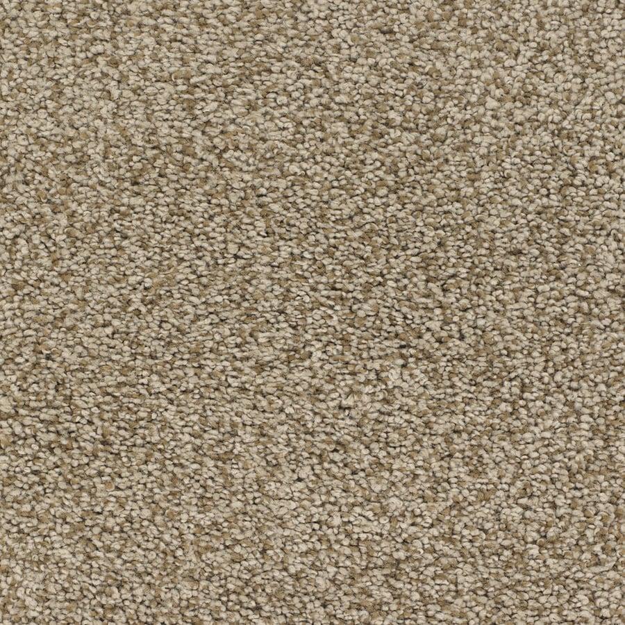 STAINMASTER TruSoft Chimney Rock Brown/Tan Carpet Sample