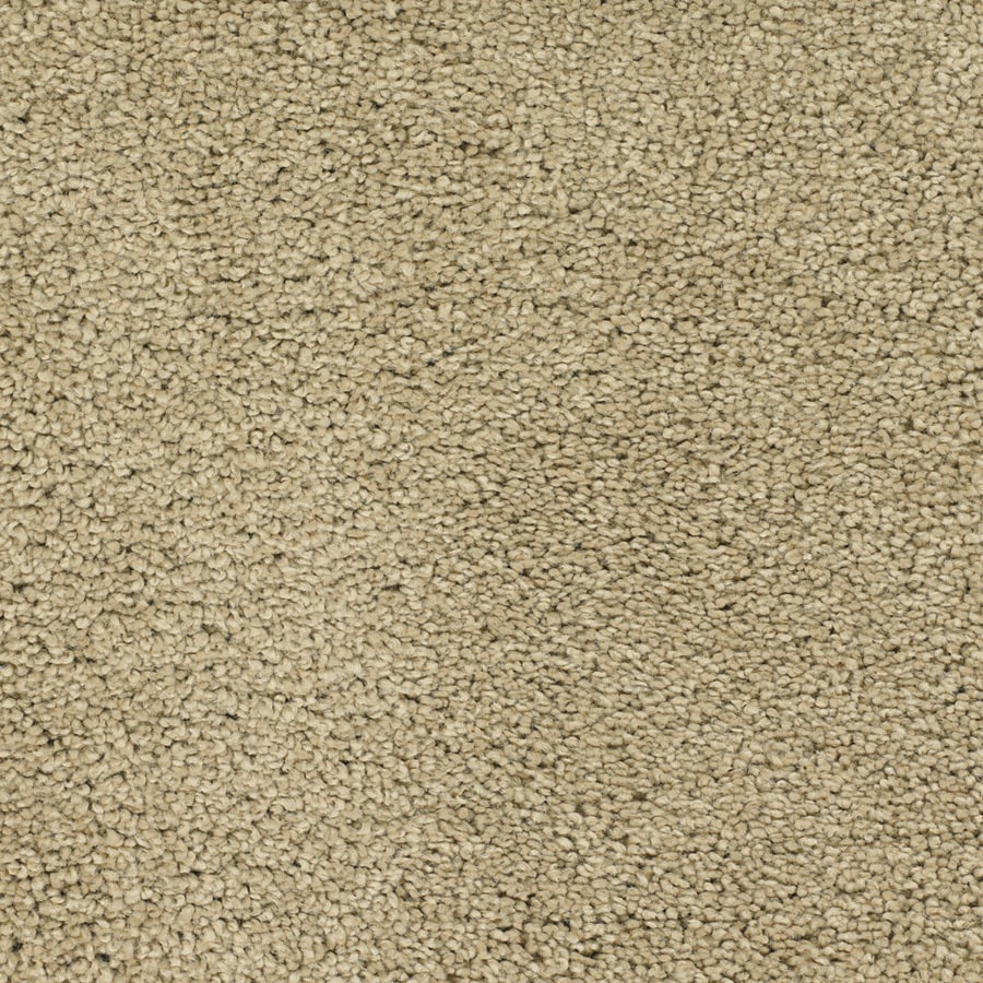 STAINMASTER Chimney Rock TruSoft Brown/Tan Plush Carpet Sample