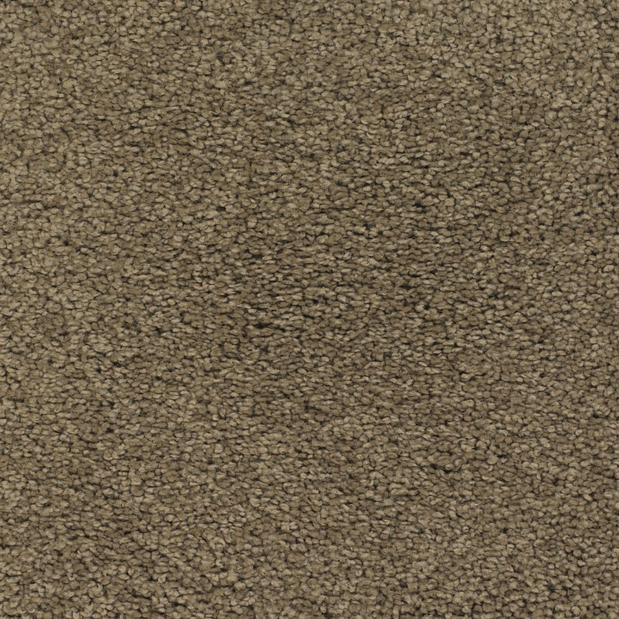 STAINMASTER TruSoft Chimney Rock Brown/Tan Plush Carpet Sample