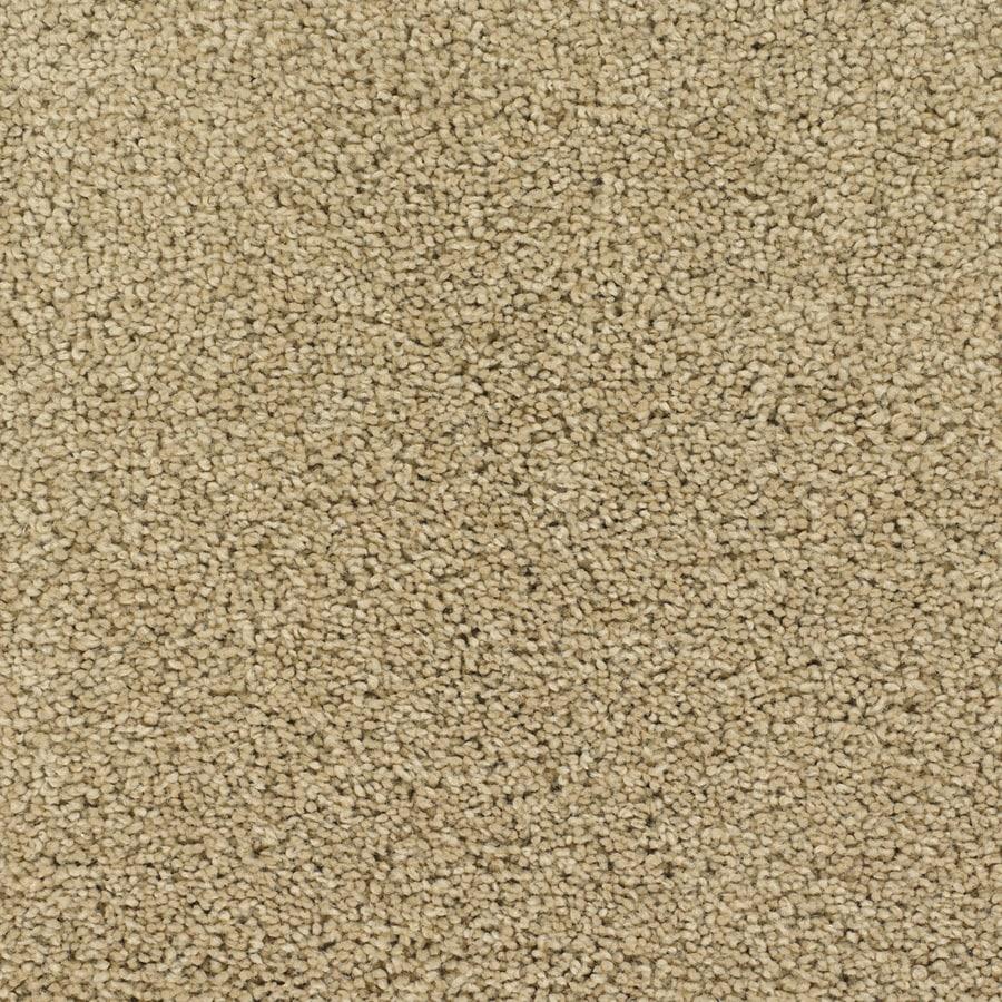 STAINMASTER Chimney Rock TruSoft Brown/Tan Plush Carpet Sample