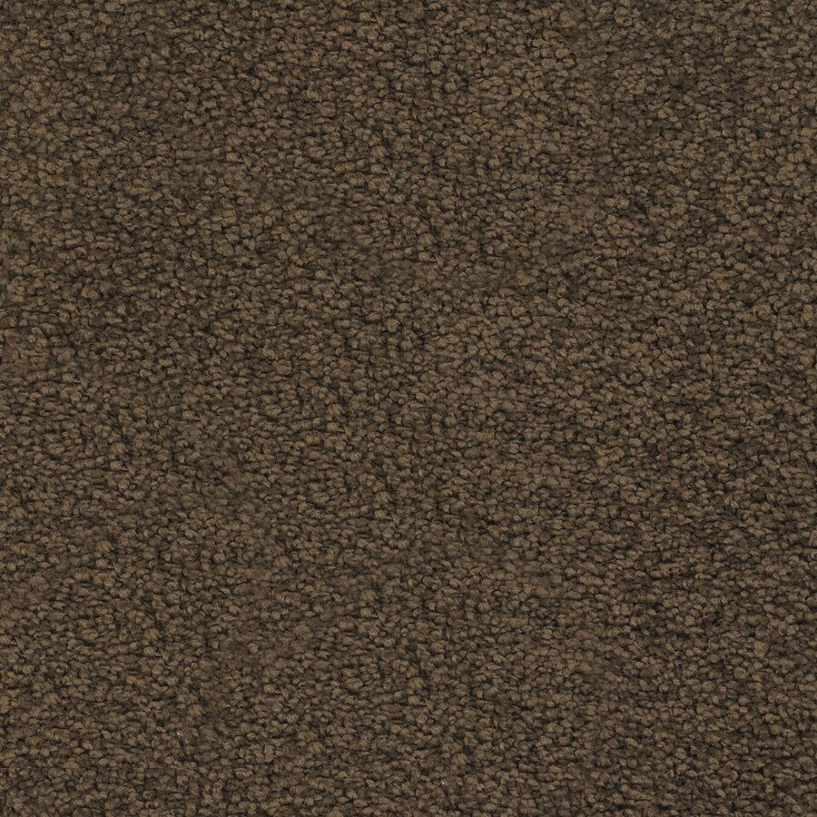 STAINMASTER Chimney Rock Trusoft Brown/Tan Plus Carpet Sample