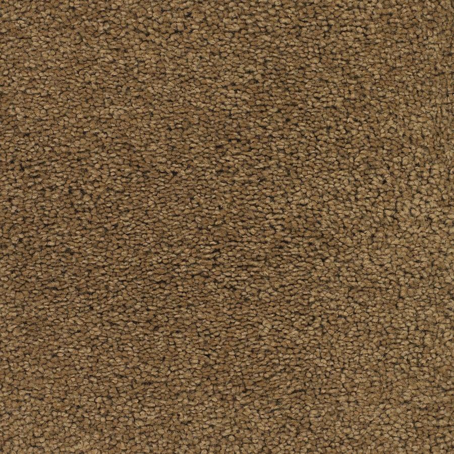 STAINMASTER Chimney Rock Trusoft Brown/Tan Plus Carpet Sample