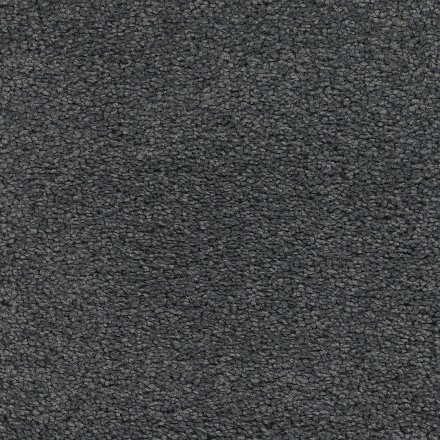 STAINMASTER TruSoft Chimney Rock Gray/Silver Plush Carpet Sample