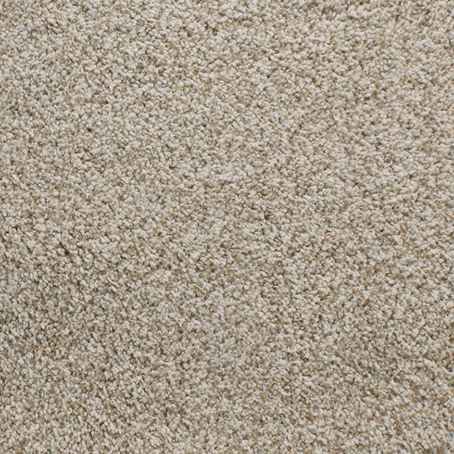 STAINMASTER TruSoft Luminosity Cream/Beige/Almond Plush Carpet Sample