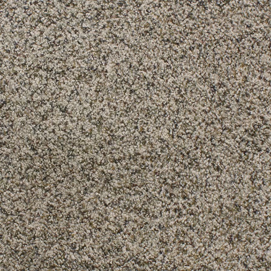 STAINMASTER TruSoft Luminosity Brown/Tan Carpet Sample