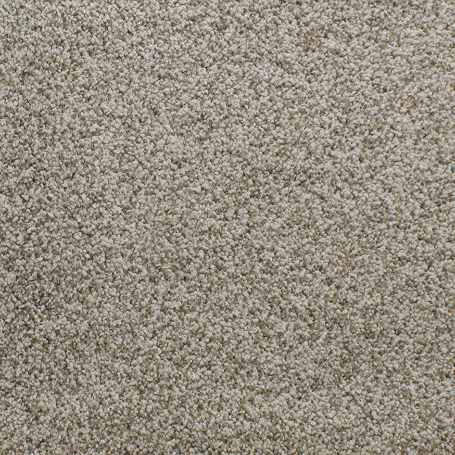 STAINMASTER TruSoft Luminosity Brown/Tan Carpet Sample
