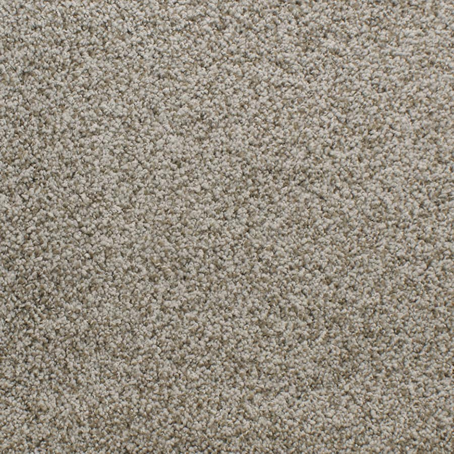 STAINMASTER TruSoft Luminosity Brown/Tan Plush Carpet Sample