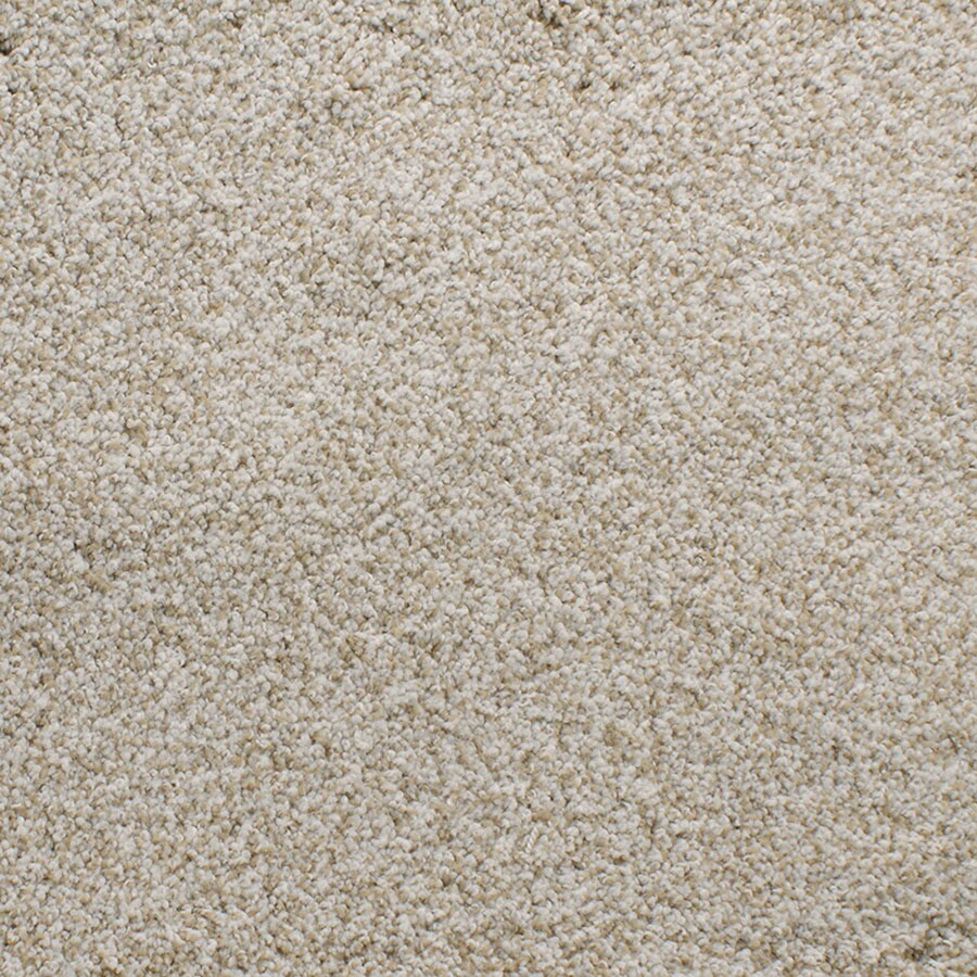 STAINMASTER Luminosity TruSoft Brown/Tan Plush Carpet Sample