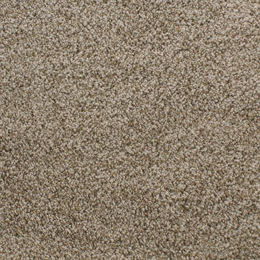 STAINMASTER Luminosity Trusoft Brown/Tan Plus Carpet Sample