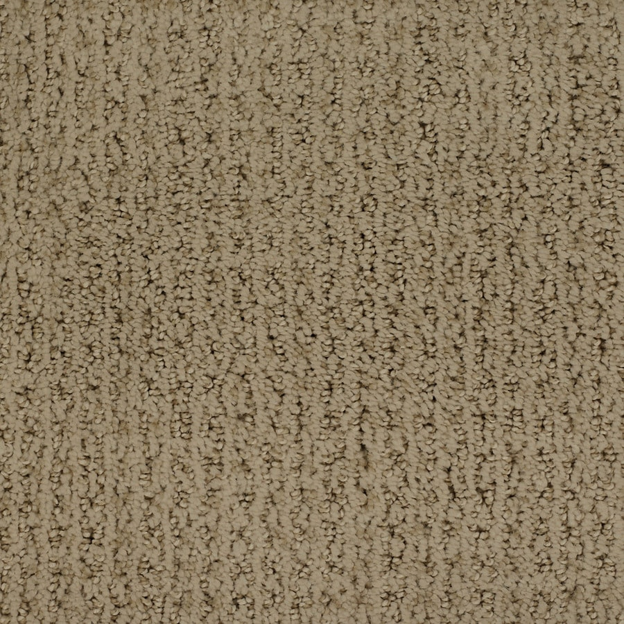STAINMASTER Salena TruSoft Brown/Tan Cut and Loop Carpet Sample
