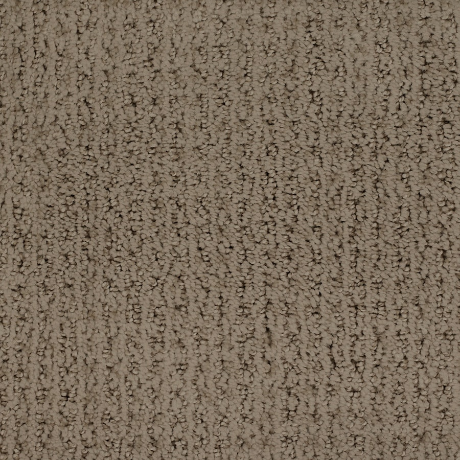 STAINMASTER Salena Trusoft Brown/Tan Cut and Loop Carpet Sample