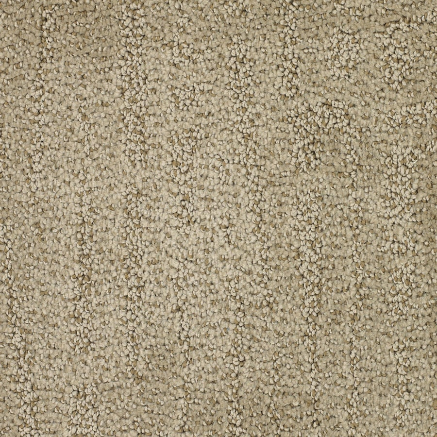 STAINMASTER TruSoft Regatta Brown/Tan Carpet Sample