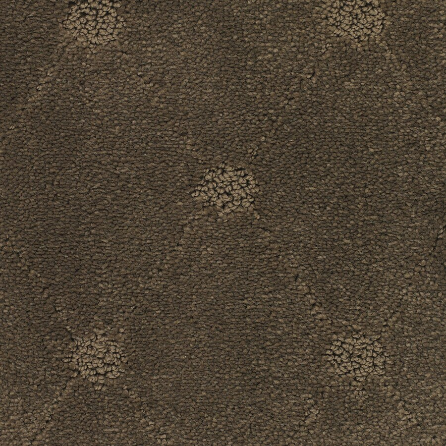 STAINMASTER TruSoft Columbia Valley Brown/Tan Carpet Sample