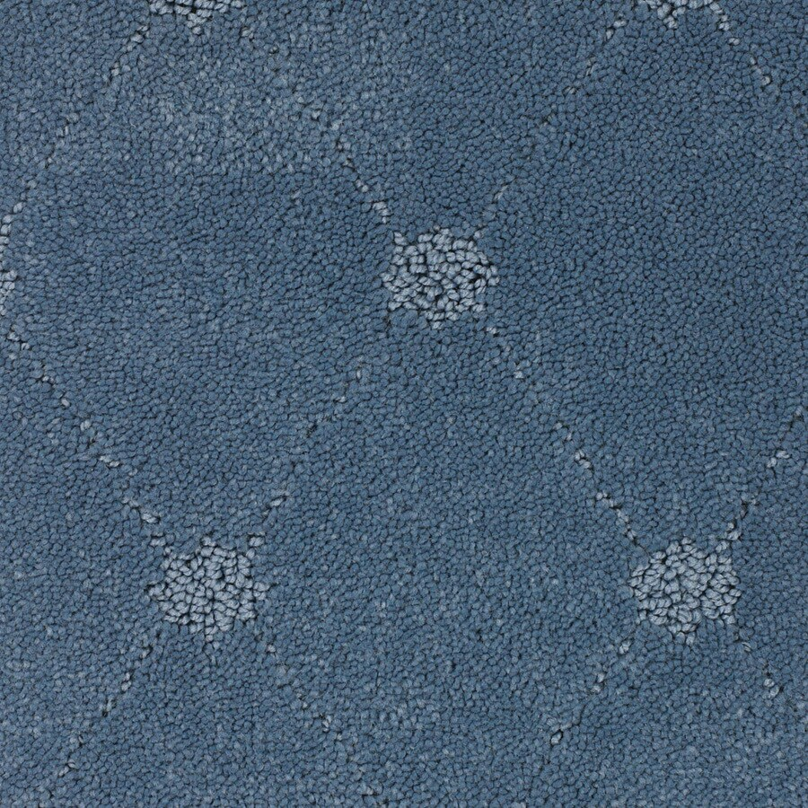 STAINMASTER TruSoft Columbia Valley Blue Berber/Loop Carpet Sample