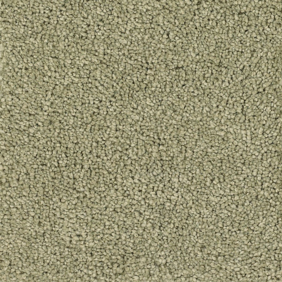 STAINMASTER TruSoft Pomadour Green Carpet Sample
