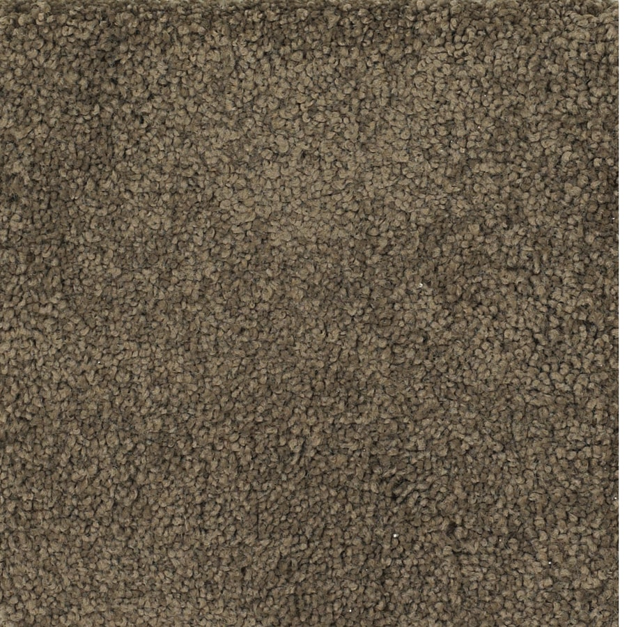 STAINMASTER Pomadour TruSoft Brown/Tan Plus Carpet Sample