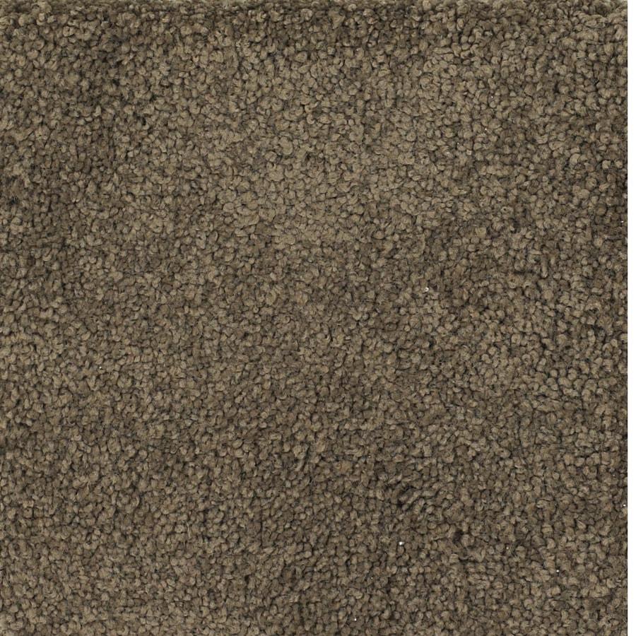 STAINMASTER TruSoft Pomadour Brown/Tan Carpet Sample